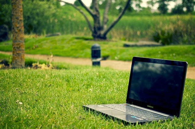 notebook, tráva, park