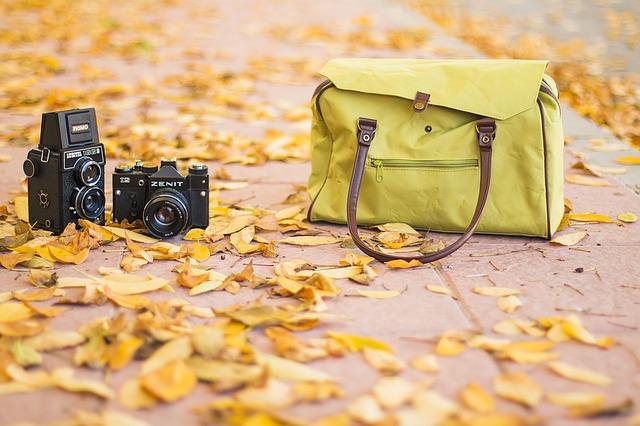 taška, listí, fotoaparát