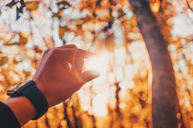 sluneční svit