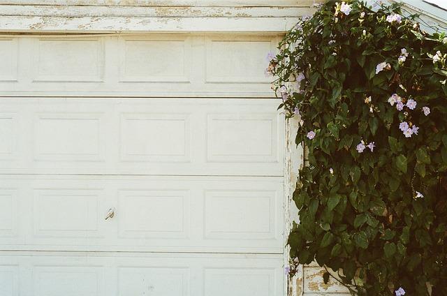 domovní vrata
